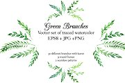 Green watercolor branches set