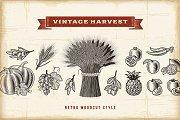 Vintage Harvest Set