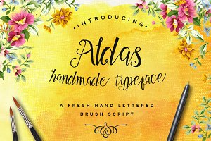 Aldas Typeface & Illustration Pack