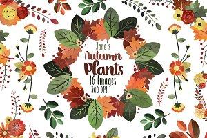 Autumn Floral Clipart
