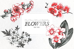 FLOWERS Hand drawn set illustrations