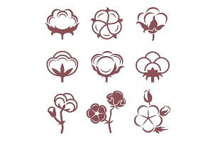 Monochrome stylized pictures set of white cotton flowers. Vector illustrations set