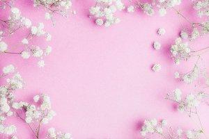 Gypsophila flowers on pink ,frame