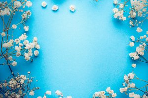 White flowers on blue, frame