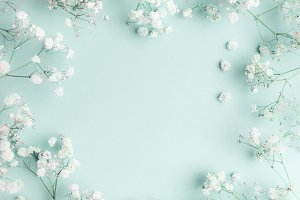 Small white flowers on turquoise
