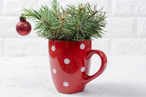 Fir  branches in the cup
