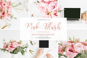 Pink Blush Styled Stock Photos