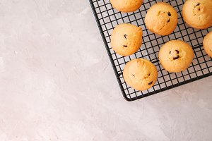 Vanilla cookies with chocholate chip
