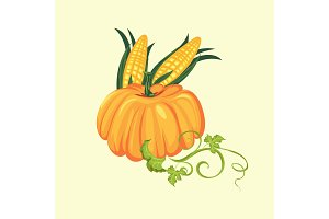 pumpkin with two corn cobs in green leaves, autumn food background vector illustration, vegetable harvesting, thanksgiving day products