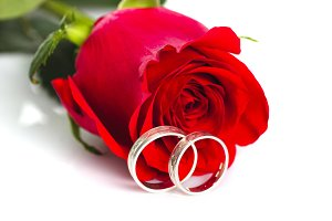 Red rose with silver rings