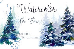 SALE Watercolor winter fir forest