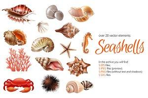 Sale! Seashells Realistic Set