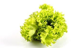 Lettuce in kitchen