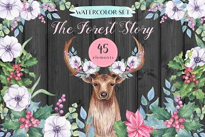 -50% OFF - The Forest Story