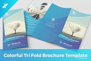 Creative Tri Fold Brochure Template