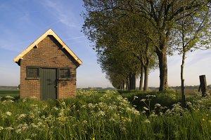 Shed near Dordrecht
