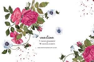 Watercolor Carmine Rose  Clipart