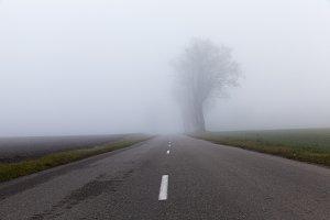 Asphalt road into the fog