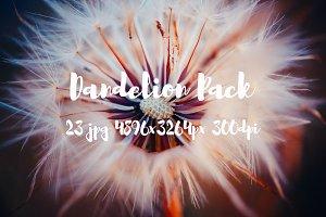 Dandelion Pack