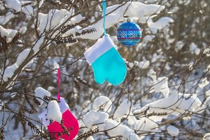 Blue and pink mittens hang on branches with snow. Christmas toys.
