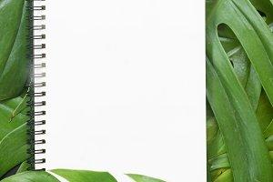 tropical botanical flat layout text