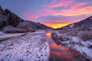 Vivid pink winter morning