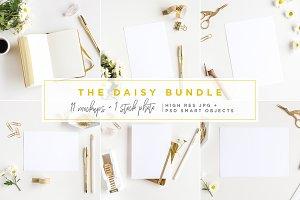 The Daisy Bundle - 12 Mockups +photo