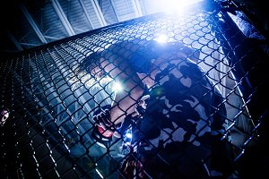 light through the cage