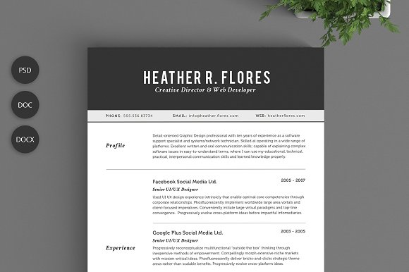2 pages resume set cv template