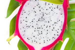 Asian dragon fruit Pitaya on monstera liana vine