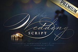 The Wedding Script & Invitation set