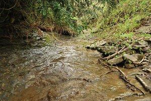 Rupit river