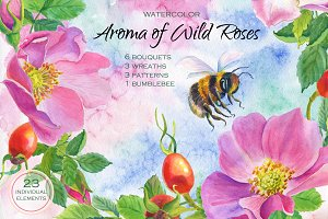Aroma of Wild Roses. Watercolor set.