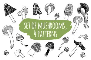 Mushrooms set + 4 patterns
