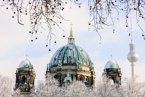 view on Berliner Dom, Germany through winter trees