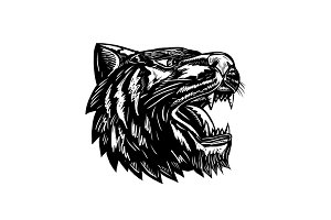 Growling Tiger Woodcut Black and Whi
