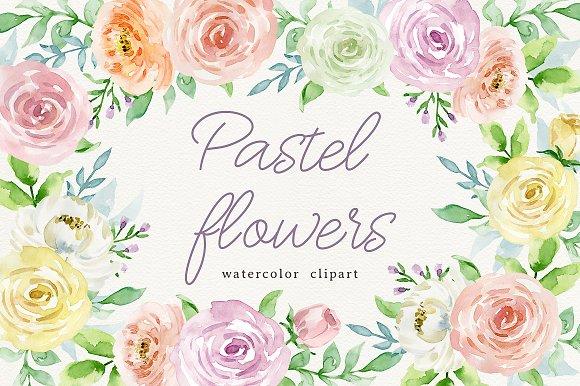Pastel flowers - Illustrations