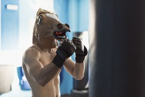 Horse face man training