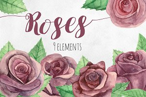 Watercolor roses. Flowers clip art
