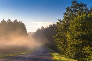 Road through fog in the morning