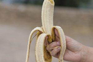 Canary banana.