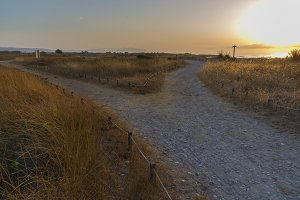 Path in Torre la Sal (Castellon)
