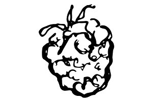 Raspberry berry sketched art vector