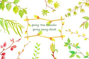 Watercolor Spring Tree Branches