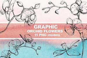 Graphic orchid flowers