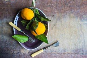 Fresh organic tangerines