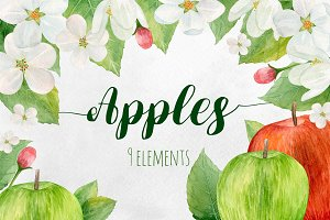 Watercolor apples. Fruits clipart
