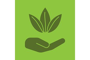 Open hand with tea leaves glyph color icon
