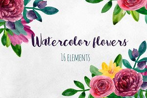 Watercolor flowers. Floral clip art