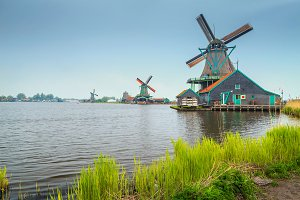 Old windmills in Zaanse Schans
